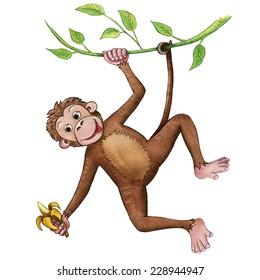 Monkey, watercolor illustration