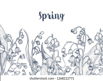 Monochrome horizontal backdrop with lily of the valley flowering plants hand drawn with contour lines on white background and handwritten word Spring. Seasonal realistic illustration.