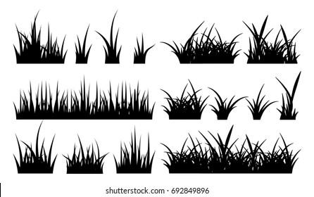 Monochrome illustration of grass. black silhouettes nature grass field