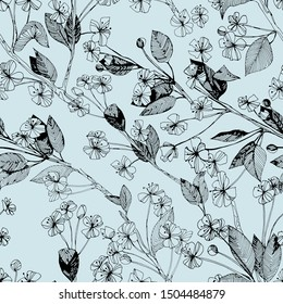 Monochrome seamless pattern with apple flower. Hand drawn ink graphics. Vintage style. Design suitable for fabric, wallpaper, wrapping paper, postcards, posters.