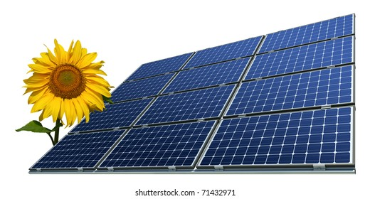 mono-crystalline solar panels and sunflower against a white background
