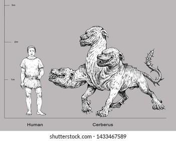 Monster illustration. Multi headed dog Cerberus and human anatomy comparison. Fantasy drawing.
