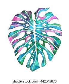 Monstera deliciosa. Forest leaf. Tropical island jungle plant. Watercolor. Hand painting illustration, artwork.  Beach party concept for wedding invitation, card, ticket, congratulation, branding.