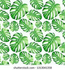 Monstrera leaf seamless pattern. Watercolor