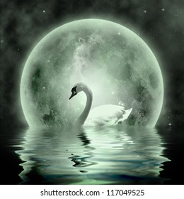Moonlight  Swan- beautiful swan under the moonlight