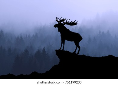 Moose silhouette on a forest like background