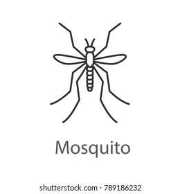 Mosquito linear icon. Insect. Midge, gnat. Thin line illustration. Contour symbol. Raster isolated outline drawing