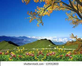 Mountain in Fall for adv or others purpose use