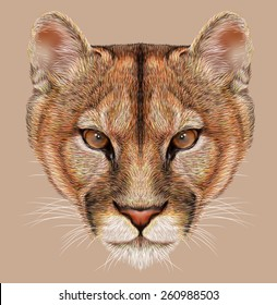 Mountain lion animal cute face. Illustrated American cougar head portrait. Realistic fur portrait of puma wildcat panther isolated on beige background.
