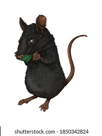 A mouse with a face mask
