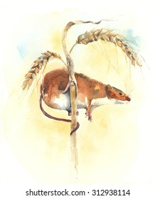 Mouse on ear of wheat watercolor painting illustration