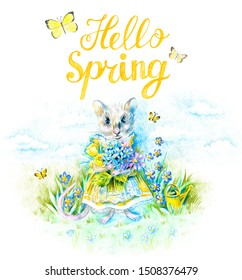 A mouse in a yellow Victorian dress holds a bouquet of garden flowers. Butterflies fly. Blue sky with clouds on the background. The symbol of the New Year 2020. Year of the rat. Lettering Hello Spring