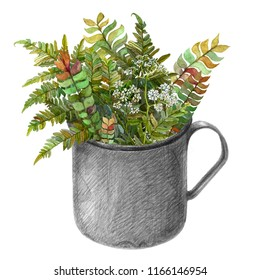 Mug with different colorful fern autumn leaves and white flowers. Watercolor and pencil drawing of wild growth in metal cup