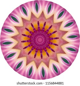 Multicolored red, orange, blue, magenta, pink mandala. Decorative element, ethnic design, web design, anti-stress therapy, meditation
