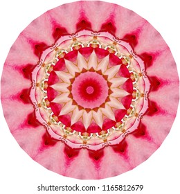 Multicolored red, orange,  pink mandala with floral pattern on white background. Decorative element, ethnic design, web design, anti-stress therapy, meditation.