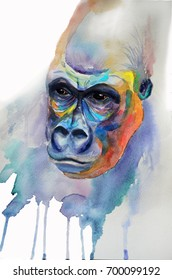 Multicolored watercolor drawing. A hand-drawn monkey. The head of a gorilla.