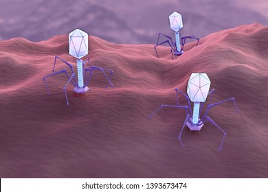 Multiple bacteriophages on a surface. 3d illustration