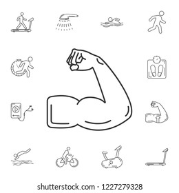 Muscle icon. Simple element illustration. Muscle symbol design from Gym and Health collection set. Can be used for web and mobile