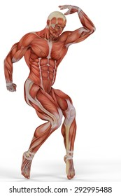 muscle medical man ballet
