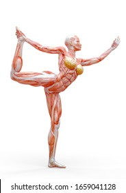 muscle woman doing a stand bow two pose in white background, 3d illustration