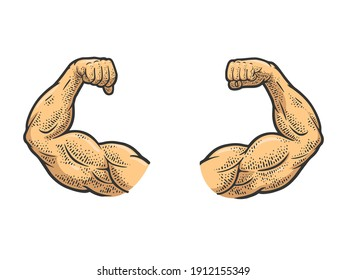 Muscular hands arms of strong man bodybuilder color sketch engraving raster illustration. T-shirt apparel print design. Scratch board imitation. Black and white hand drawn image.