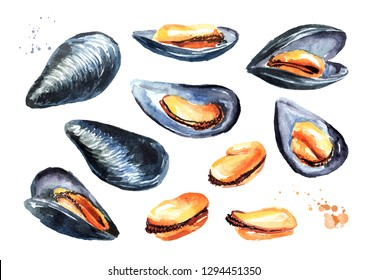 Mussels, seafood set. Watercolor hand drawn illustration isolated on white background