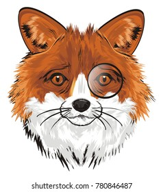 muzzle of fox with monocle