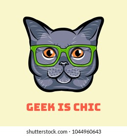 Muzzle of gray cat wearing in glasses. Cat geek. Geek is chic.  illustration.