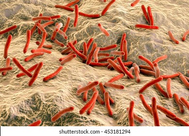 Mycobacterium leprae bacteria inside human body, close-up view. Bacteria which cause leprosy. 3D illustration