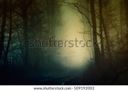 Royalty Free Stock Illustration Of Mystical Dark Forest Wallpaper Jpg 450x320 Enchanted Shutterstock