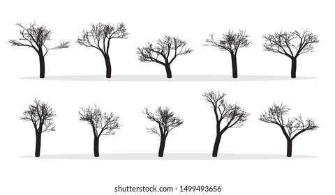 Naked Trees Silhouettes Set. Hand Drawn Isolated. Autumn. Spring. Fall. Raster