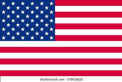 National political official US flag