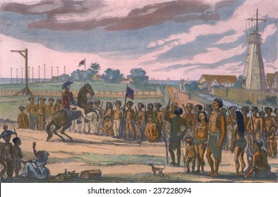 Natives of the colony of British Guiana are reviewed prior to their clean up operations, Demerara Slave Revolt in British Guiana in August-September 1823, 1824 etching with modern color.