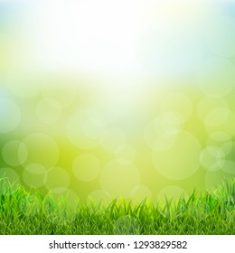 Natural Background With Grass Border