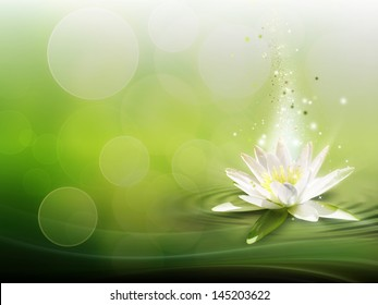 natural background with a water lily