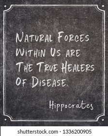 Natural forces within us are the true healers of disease - famous ancient Greek physician Hippocrates quote written on framed chalkboard