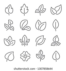 Natural leaf line icons. Young leaves of plants, forest tree oak, elm and ash leafs and eco greens fertilizer or autumn fall, garden  outline pictogram isolated symbol set