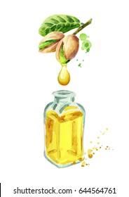 Natural pistachio oil.Hand drawn watercolor