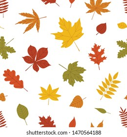 Natural seamless pattern with autumn fallen leaves of forest trees on white background. Bright colored botanical seasonal illustration in flat style for wrapping paper, wallpaper, fabric print.