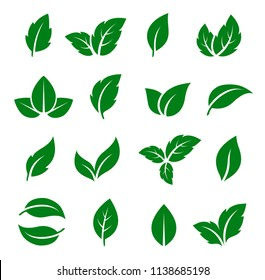 natural set of isolated green leaf icons on white background