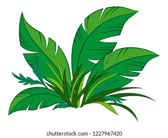 Nature Symbol, Cartoon Tropical Plant with Green Leaves, Isolated on White Background.