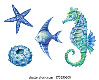 nautical elements, sea life, fish, seahorse, urchin, starfish watercolor illustration, isolated on white background