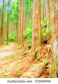 Neon Line Cartoon Drawing; Trail at the World Heritage Forest Kumano Kodo, Wakayama Prefecture, Japan, May, 2012