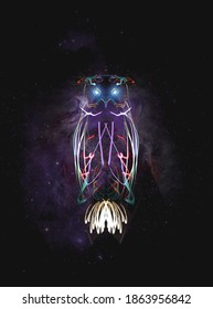Neon owl made with long exposure photos. Drawing random shapes and joining them in PS to create these animals.
