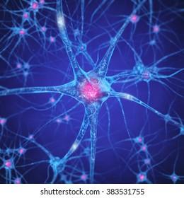 Neuron , Brain cell , Neurotransmitters