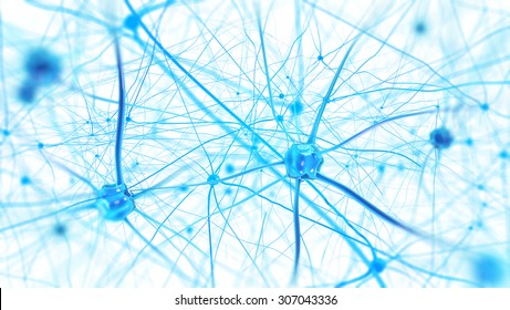 Neurons in the brain on white background