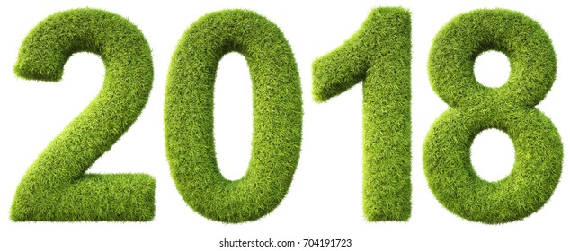 new 2018 year from the green grass. isolated on white. 3D illustration.