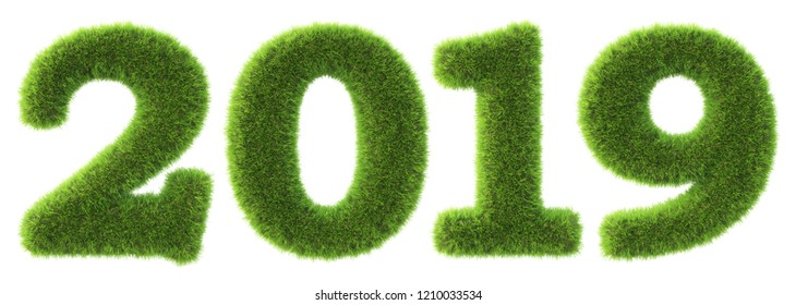 new 2019 year from the green grass. isolated on white. 3D illustration.