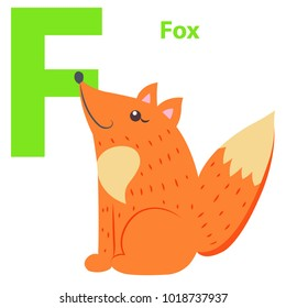 New babies alphabet with letter F Fox flat design on white background. Red cartoon animal teaches basics of reading.  illustration of preschool education color funny card graphic style.