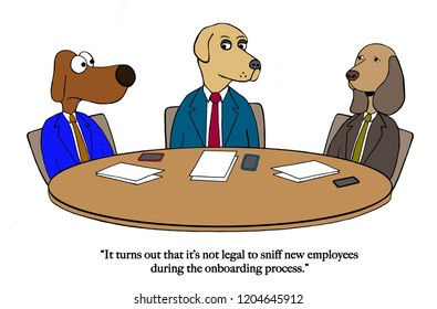 New hires have trouble with onboarding sniff